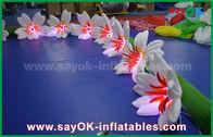중국 8m Wedding를 위한 긴 나일론 팽창식 점화 훈장 백합 꽃 차이 공장